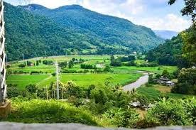 หมู่บ้านทำการเกษตร ท่องเที่ยวแนววิถีเกษตร แปลงผักและไร่ชา และวิถีชีวิตชนเผ่าต่างๆ