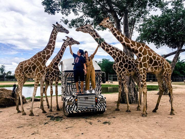 สถานที่ท่องเที่ยว ใกล้ชิดสัตว์แบบเอกซ์คลูซีฟ  คือ สวนสัตว์เปิดซาฟารีปาร์ค แอนด์ แคมป์ (Safari park and camp) กาญจนบุรี – สวนสัตว์ที่สามารถสัมผัสใกล้ชิดสัตว์ สวนสัตว์ซาฟารีปาร์ค แอนด์ แคมป์แบ่งออกเป็นสองโซน ได้แก่ โซนแสดงโชว์ และโซนสวนสัตว์เปิด