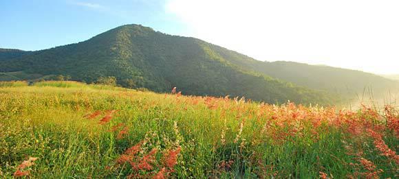 ยอดเขาเทวดา จุดท่องเที่ยวของนักท่องเที่ยวที่ชอบท่องเที่ยวป่า มีสีสันที่สดใสด้วยสีส้มตัดกับทุ่งหญ้าสีเขียวขจี