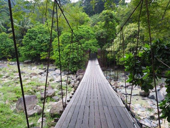 หาดส้มแป้น เองก็ยังมีสถานที่ท่องเที่ยวที่เป็นสะพานเชือกที่ทำด้วยไม้ห้อยโตงเตงอยู่ ซึ่งนักท่องเที่ยวสามารถมาเที่ยวชมได้