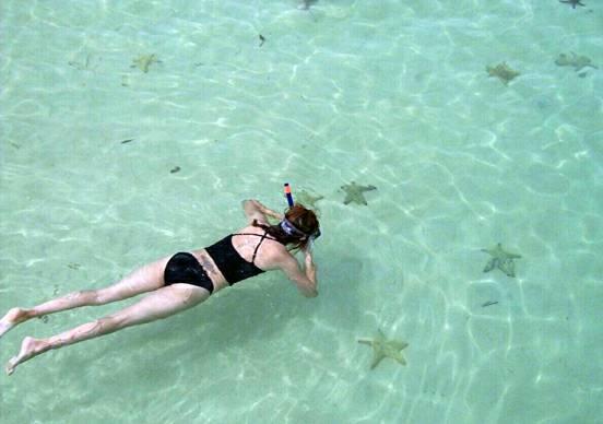 เกาะมุก ที่มีทั้งหาดทรายขาว มีชื่อเสียงที่โด่งดังในเรื่องของการดำน้ำดูปะการังหรือไม่ก็ดูปลาในท้องทะเล