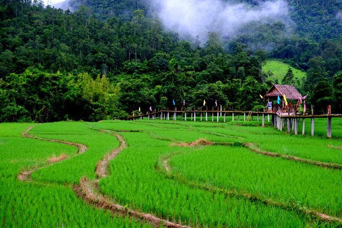 สถานที่ท่องเที่ยวปาย  จังหวัดแม่ฮ่องสอน ที่สวยงาม