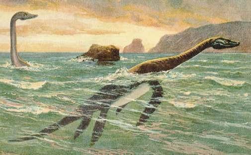 เนสซีตำนานสัตว์ประหลาด มีผู้เริ่มต้นพบเห็นในช่วงประมาณปี 1900 กว่าๆ
