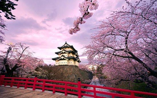 ประเทศญี่ปุ่น ที่น่าหลงใหลทำให้หลายๆ คนหลงรัก