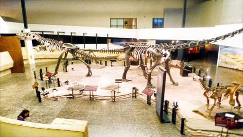 พิพิธภัณฑ์ไดโนเสาร์ภูเวียง ค่าเที่ยวชม