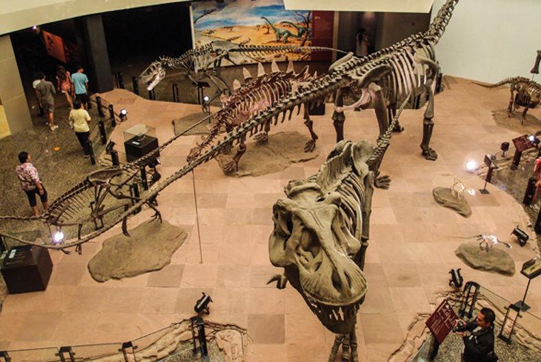 พิพิธภัณฑ์ไดโนเสาร์ภูเวียง มีทั้งโครงกระดูก