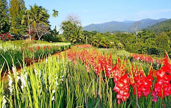 สถานที่ท่องเที่ยวสวยงามในไทย ที่นักท่องเที่ยวยังไม่รู้จัก