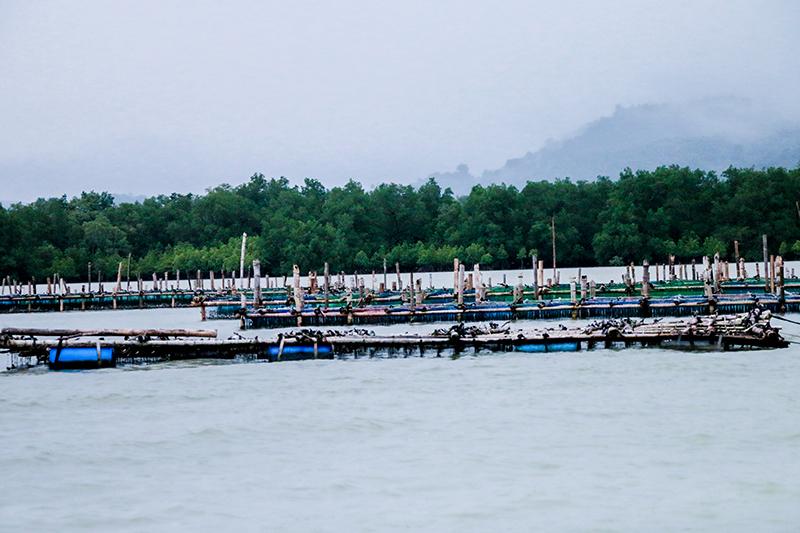 สถานที่ท่องเที่ยวสวยงามในไทย