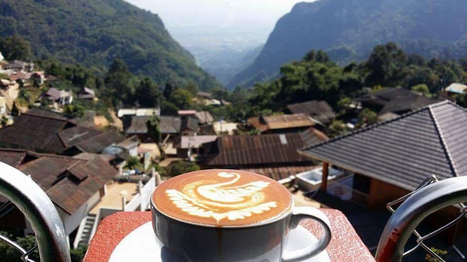 ดอยผาฮี้ แหล่งปลูกกาแฟคุณภาพเยี่ยม