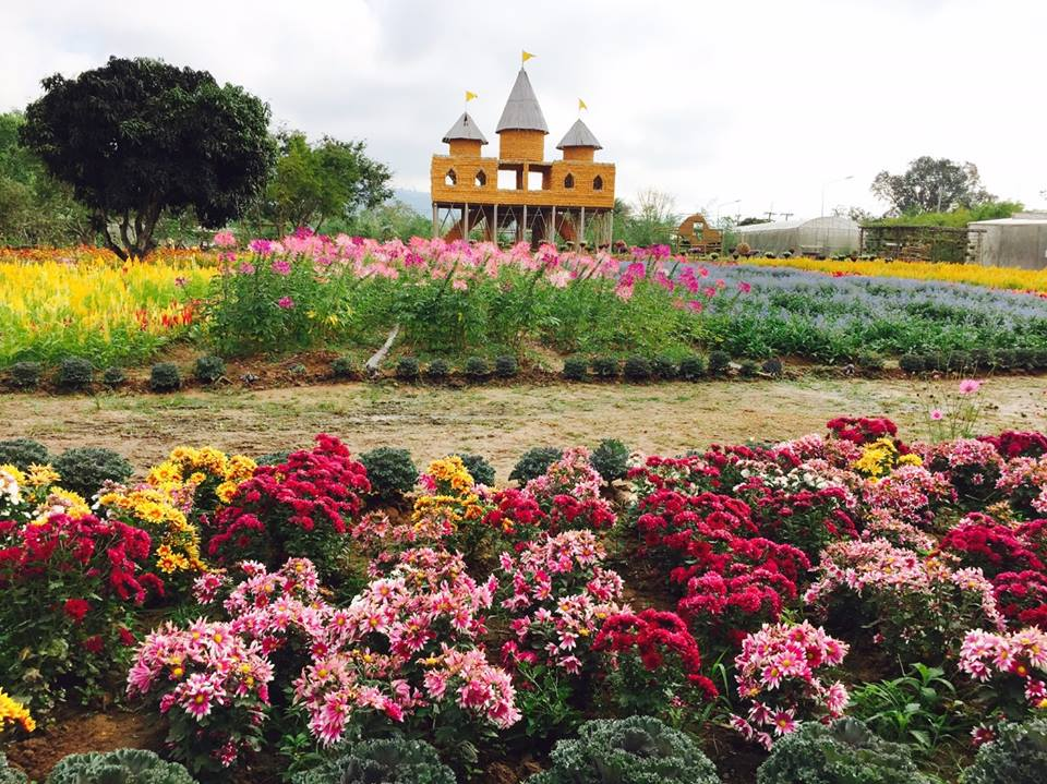 จุดเด่นสถานที่ท่องเที่ยว The Little Garden